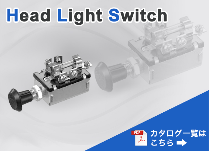 head_light_switches